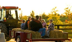 hayrides Carroll County