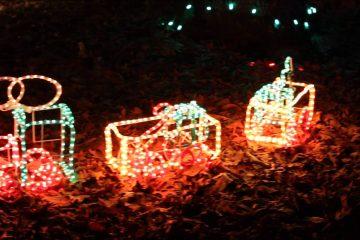 Christmas Magic Lights York